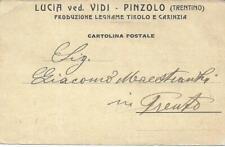 CARTOLINA COMMERCIALE1906 TRENTO PINZOLO RENDENA  DITTA VIDI