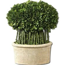 Uttermost Willow Topiary Preserved Boxwood - 60108
