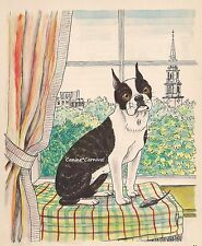 Sweet & Adorable Boston Terrier Vintage Art Print 1950