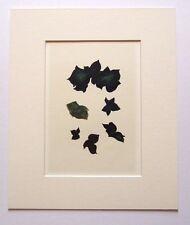 """Georges BRAQUE LTD ED vintage monté Lithographie, Mourlot, 1963, 12 x 10"""" GB069"""