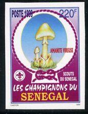 TIMBRE AFRIQUE SENEGAL / NEUF NON DENTELE N° 1426 **  FLORE / CHAMPIGNON