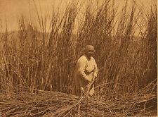 Edward Curtis -  Gathering Tules - Lake Pomo - Large Format Photogravure - 1928
