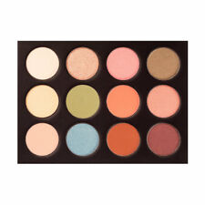 COASTAL SCENTS eyeshadow palette - PAINTED LADY - 12 colours P037