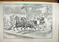 Original Old Antique Print 1896 Horses Hunters Harness Coach Country Lane 19th