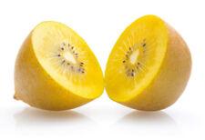 Golden Yellow Kiwi Fruit Seeds x 100 Easy to grow