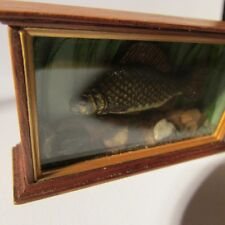 Dollhouse miniature carp fish in display case ~ 12th scale