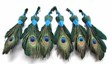 8 inch Feather/Flocked Turquoise/Green clip-on Peacock Bird, Handmade, set of 6