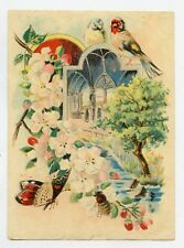 GRANDE CHROMO. CHARDONNERET, MESANGE, INSECTES . GOLDFINCH . Bird. Oiseau