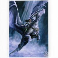Quality Anne Stokes Fridge Magnet~Fantasy Art~Take to the Air~AS20~uk seller