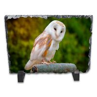 Barn Owl Rock Slate Photo Frame - Rectangle