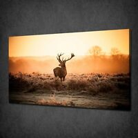 RED STAG DEER MISTY MORNING CANVAS PRINT PICTURE WALL ART VARIETY OF SIZES