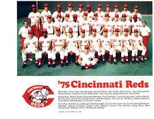 1975 CINCINNATI REDS TEAM 8X10 PHOTO GRIFFEY  ROSE  BASEBALL OHIO MLB HOF