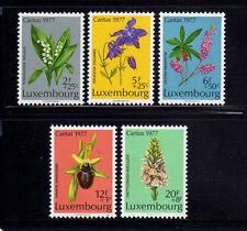 LUXEMBURGO/LUXEMBOURG 1977 MNH SC.B313/B317 Flowers
