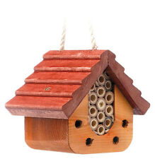 Hanging Ladybird & Bug Slice by Tom Chambers - Garden Insect Home House Box