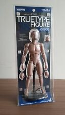 Hot Toys TTM 16 TrueType True Type Body Caucasian Advanced Version Figure NEW