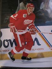 """8"""" x 10"""" Color Glossy NHL NHLPA Niklas Lidstrom Hockey Detroit Red Wings"""