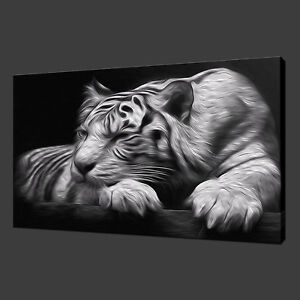 TIGER BLACK AND WHITE CANVAS PRINT PICTURE WALL ART HOME DECOR FREE DELIVERY