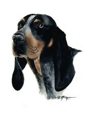 Bluetick Coonhound Dog Watercolor Painting 11 X 14 Art Print by Artist Dj Rogers