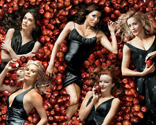 Desperate Housewives [Cast] (12767) 8x10 Photo