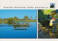 LARGE KAKADU NATIONAL PARK POSTCARD - Steve Parish - AUSTRALIA'S WORLD HERITAGE