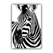 BLACK AND WHITE ZEBRA HEAD  -  CANVAS WALL ART PRINT ARTWORK