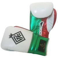 MEXICAN CANELO BOXING GLOVES BAG PAD UFC INSPIRED BY GRANT WINNING CLETO REYES
