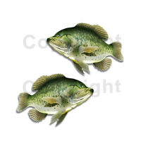 Largemouth Bass Sticker Decal Fishing Boat Car Truck Camper Trailer F030 2 Pack