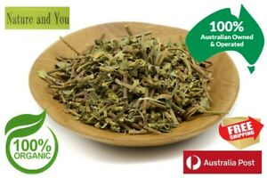 Certified Organic BRAHMI / BACOPA (Bacopa monniera) 30g/45g