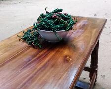 Piper nigrum 100% Pure Ceylon Organic Black Pepper  Premium Quality seed natural