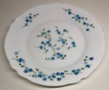 Lot51 Desde 6 Grandes Platos Planas Arcopal Francia De 24 CM Flores Azul Miosota