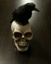 Raven on Skull - Halloween Deco (Must See Photos - Creepy Collectible) Low Ship