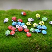 100Pcs Mixed Mini Ladybird Multi-Color Wooden Ladybugs Micro Landscape Decor PRO
