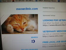 Domain for Sale: meowclinic.com -- PERFECT for the vet in Rochester, Minnesota