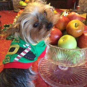 🎄 SALE £7.99-£4.99 CUTE MEDIUM DOG PET ELF CHRISTMAS COSTUME  TOP 🎄
