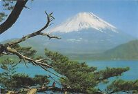 BT13913 Mt fiji by lake motosu           Japan