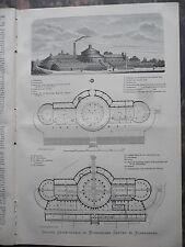 1881 Kopenhagen Botanischer Garten Teil 2