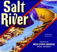 Mesa Arizona Salt River Dam Orange Citrus Fruit Crate Label Art Print