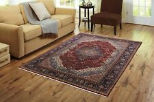 Indian Hand Knotted Rug 100% Handmade Wool Carpet Oriental Large Area Rugs 6'X9'