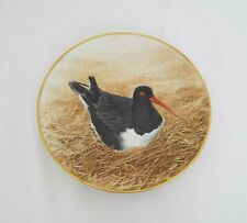 The Danbury Mint Vintage Collectable plates - Waterbird plates - Oyster Catcher