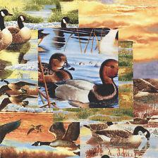 """Duck Duck Goose 30 4"""" fabric squares cotton quilt quilting nature wildlife"""
