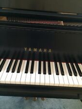 Yamaha Gh1 5'3'' Baby Grand Piano #3310849 In Very Good Condition. A Beautiful