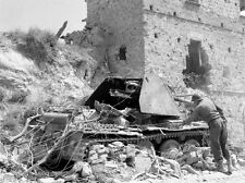 WW2 Photo WWII US Army 10th Mountain Italy 1944 with German Tank Destroyer/ 1393