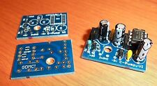 Charge Pump PCB - Guitar Effects w/Positive Ground - DIY - Printed Circuit Board
