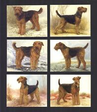 Cigarette/Trade/Cards. Imperial. Dogs. Airedale Terriers.(Full Set of 6).(1999).