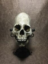 Peruvian Elongated Human skull replica - REAL SIZE, BRAND NEW - Zane Wylie