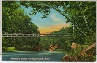 Suspension Bridge Sugar Creek Turkey Run State Park Marshall Indiana Postcard D2