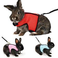 HAMSTER Petit chat lapin cochon rat furet respirant Harnais Laisse mène colliers