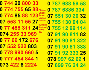 NEW Vodafone UK GOLD VIP BUSINESS EASY MOBILE PHONE NUMBER SIM Card Simcard 888