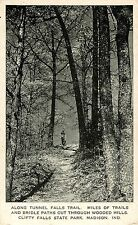 c1930s Tunnel Falls Trail, Clifty State Park, Madison, Indiana Postcard