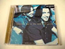 THE WARREN BROTHERS Beautiful Day In The Cold Cruel  CD Promo Perpetual Flip Box